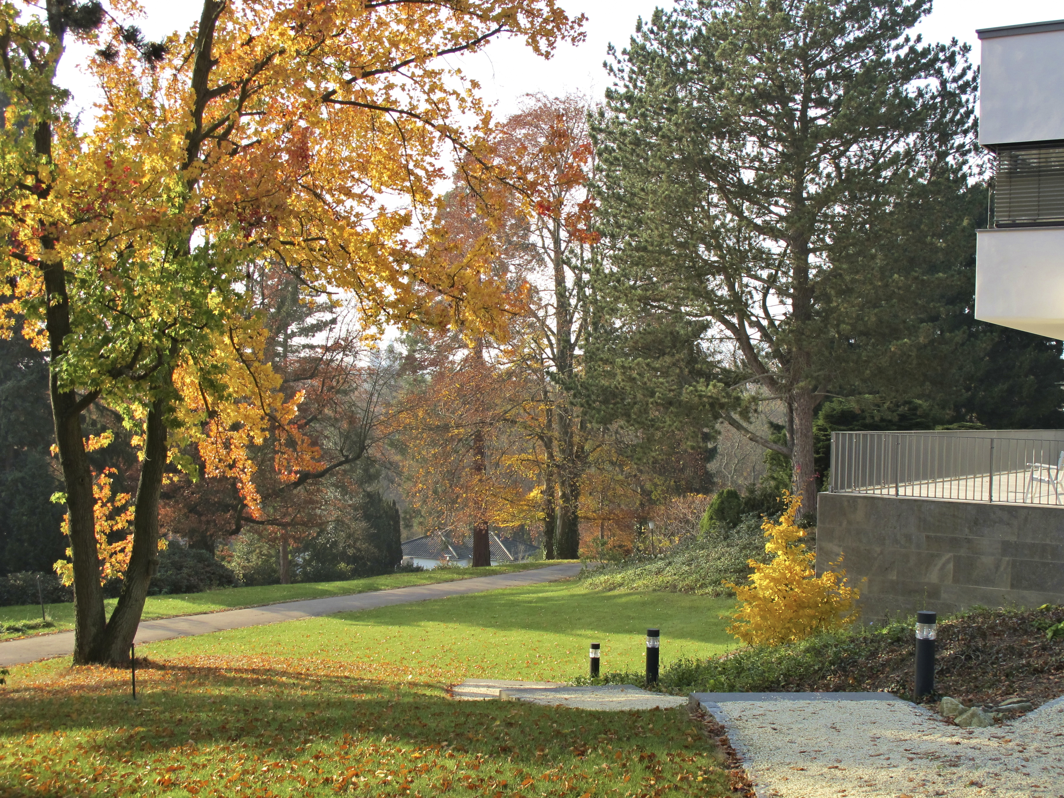 Autumn at the Institute